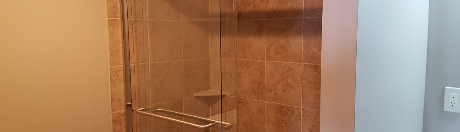 Ament Basement Remodel Shower 2