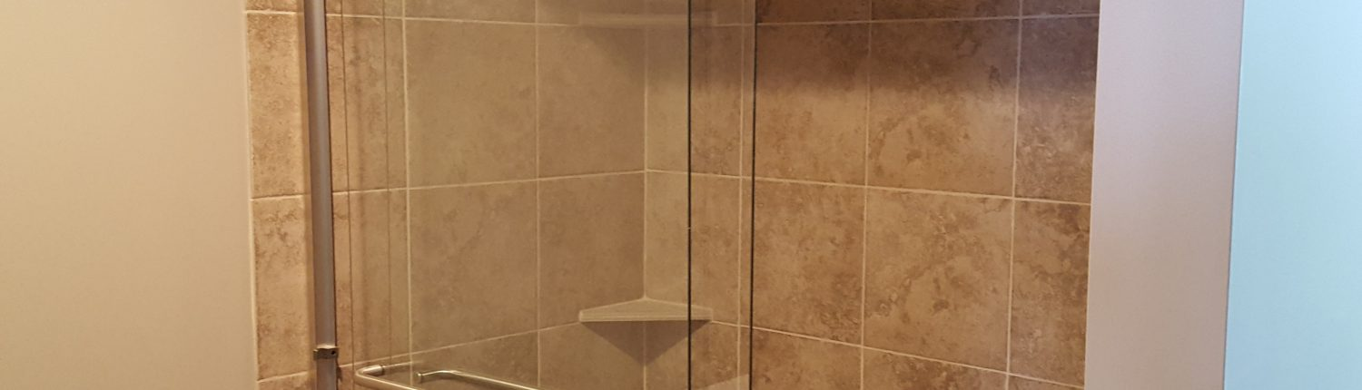 Ament Basement Remodel Shower