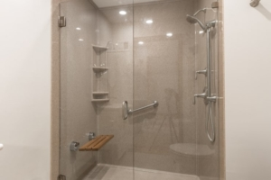 Davis onyx shower with adjustable shower head and safety seat